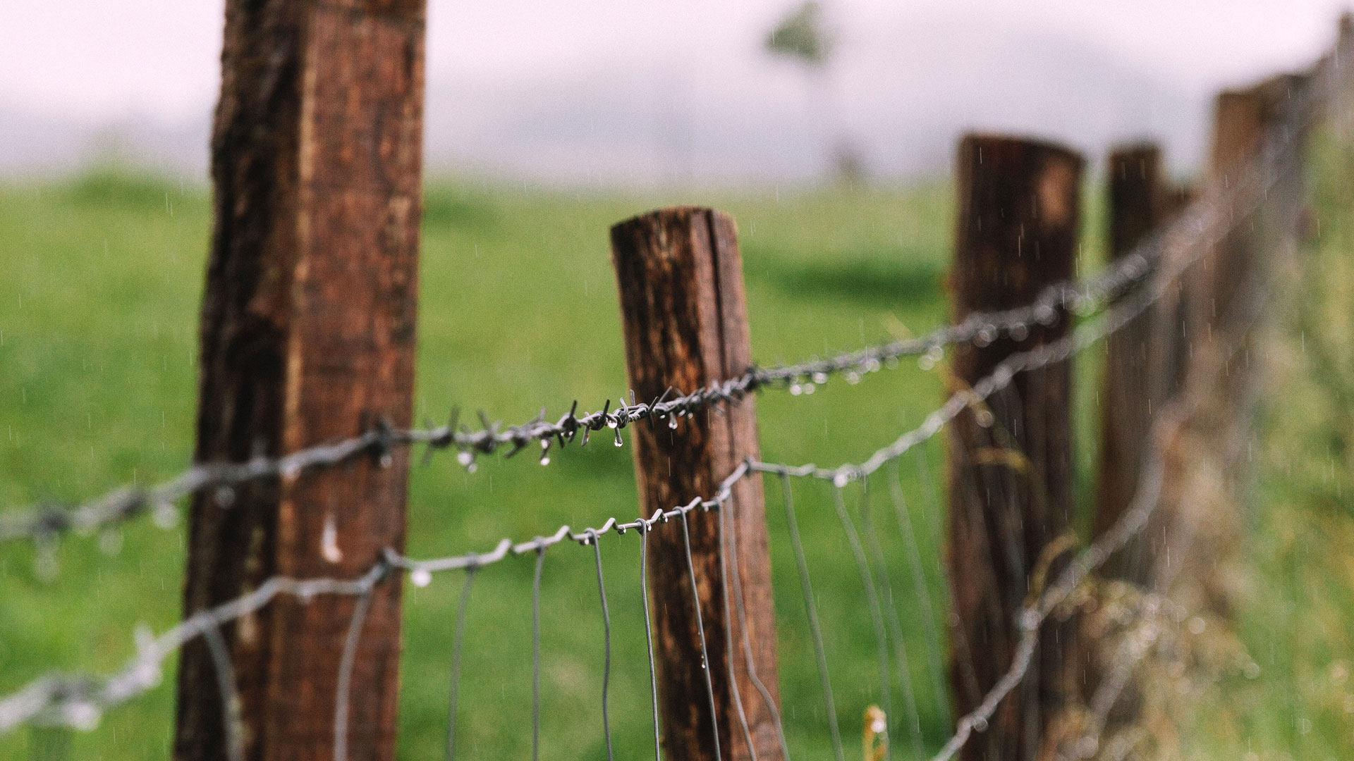 Adelaide Hills Fencing Repairs: I enjoy it!